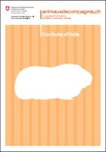 Cochons d'Inde - mon animal...