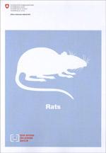 Rats - mon animal j'en prends soin